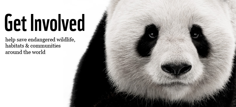 Proudly supporting the World Wildlife Fund